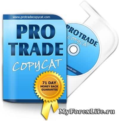 Трендовая торговая стратегия ProTrade Copy Executive